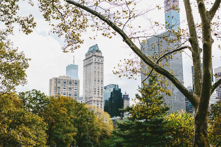 NYC (35)