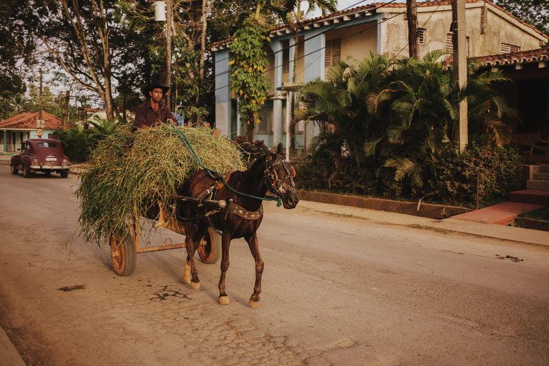 Cuba (300)