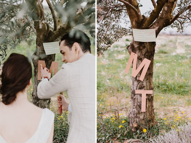 provence_wedding_ceremony (26a