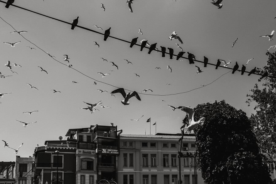 Istanbul-wedding (8)
